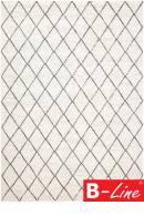 Kusový koberec Transform 229 001 100